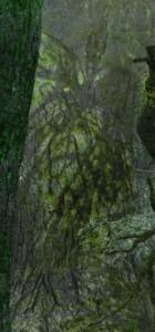 jabberwocky 140x300 Tulgey Wood improved 3D render